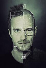 Die Fliege Breaking Bad 3 Burning Series Serien Online Sehen